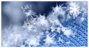 Snow Day Activity Snowflakes
