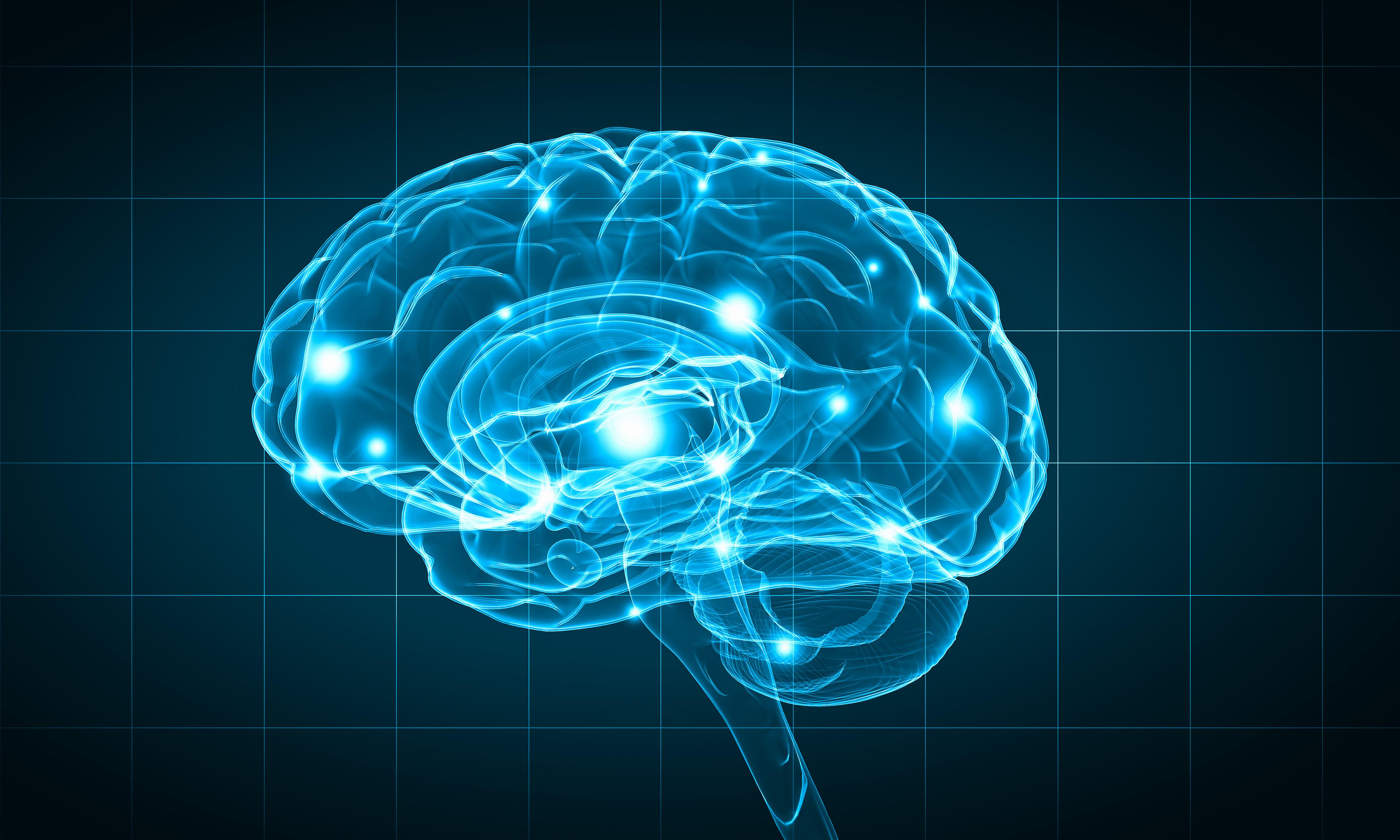 Handwriting and the Brain